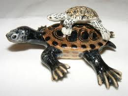 diamond-back-terrapin-with-baby-northern-rose